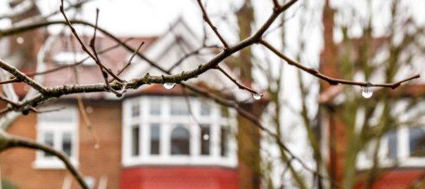London suburb of Chiswick in winter rain