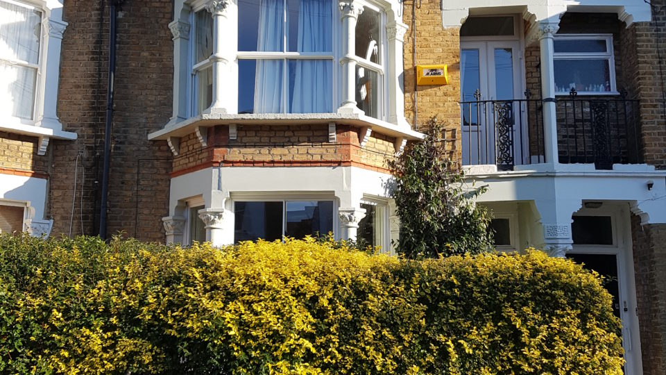 Romola road - sash windows